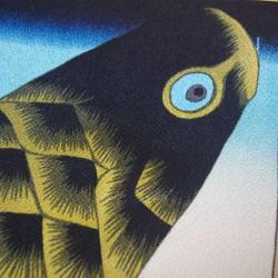 Carpe bannière noire - 70 cm