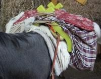 Installation sur les ânes