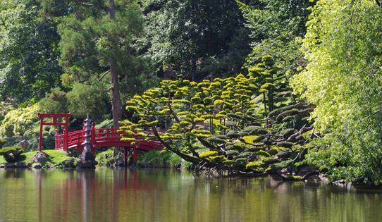 Jardin japonais for Le jardin oriental de maulevrier